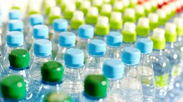 Bacteria capaz de producir plásticos